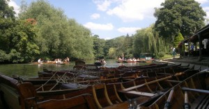 Thames Skiffs